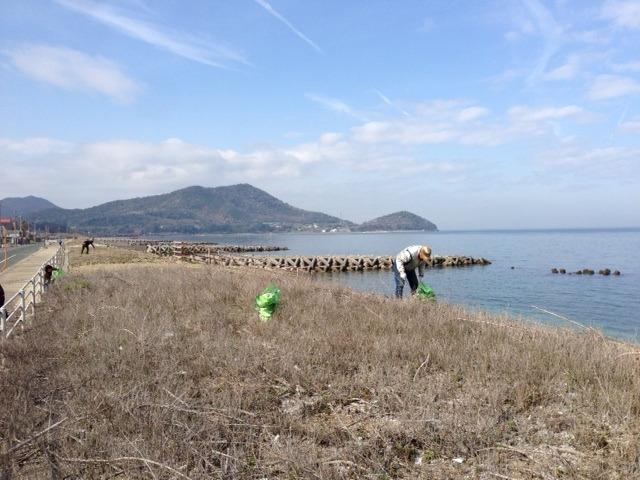 海岸清掃4